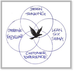Design Thinking  Operative Exzellenz Lean Six Sigma Customer Experience